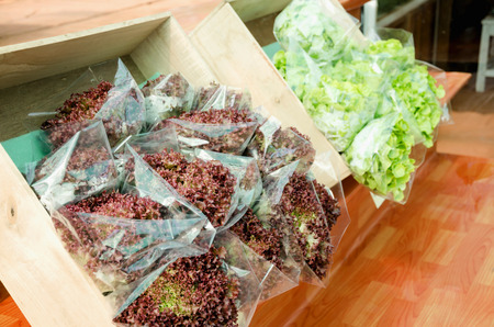 fruit eater: organic vegetables produce