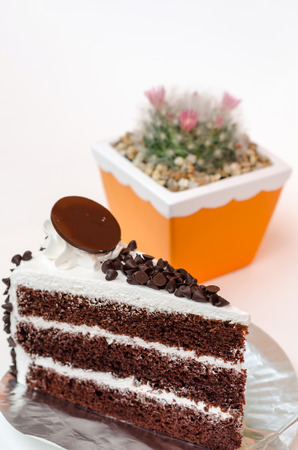 morsels: milk bar chocolate chip layer cake on white background