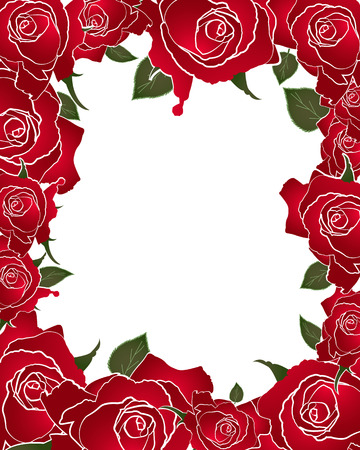 red rose: red rose frame