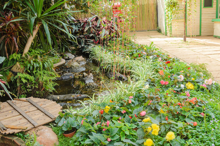 Tiny corner garden flower and plant designs