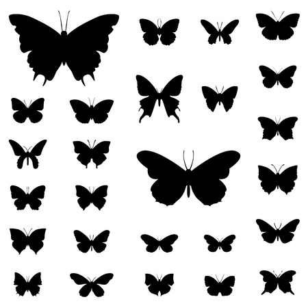 butterfly silhouette: Butterfly silhouette illustration set