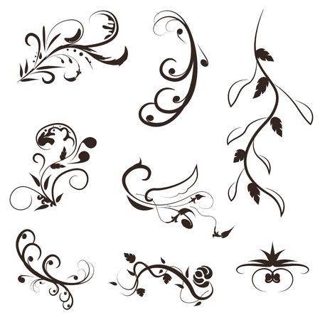 elegant white: flower and leaves vector swirl line design,floral swirl illustration set