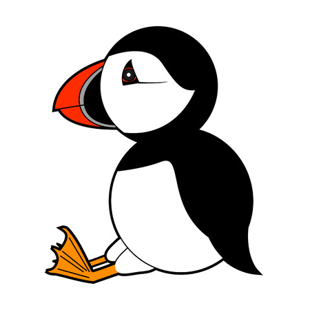 puffin vector illustration on white background