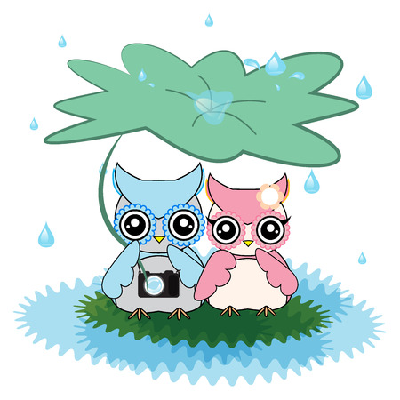 rainfall: vector of cute love owls with green leaves among rainfall