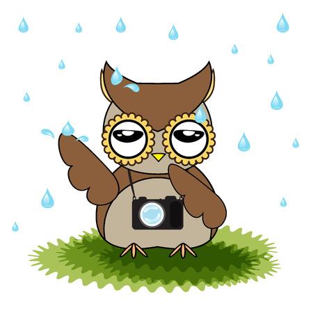 vector cartoon designs of owl bored from rainfall Illustration