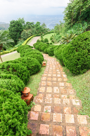 Pathway among greenery lawn with ornamental trees in outdoor garden