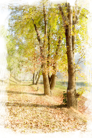entity: digital painting of maple tree row