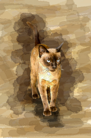 ritzy: digital painting of cat