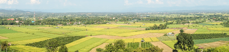 bali province: Panoramic landscape of rice field at Fang countryside in Thailand