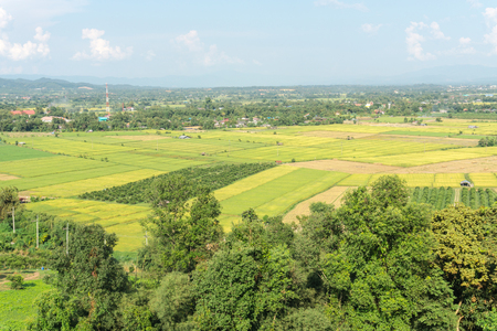 bali province: landscape of rice field at Fang countryside in Thailand Stock Photo