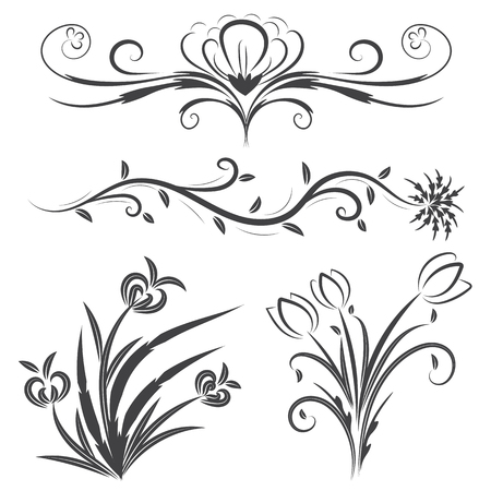 Vector of flower calligraphic design elements in black lines swirl on white background. Illustration