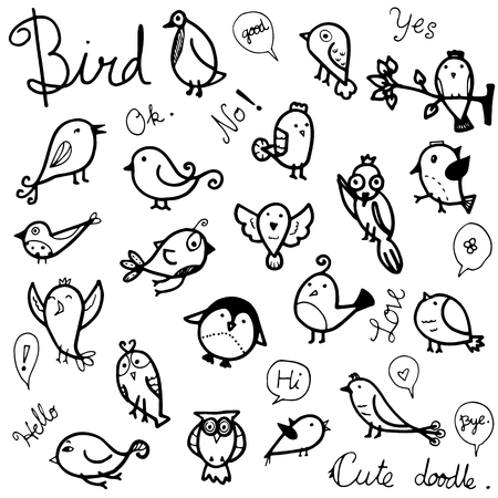 vector collection set of cute birds drawing in black outline doodle on white background