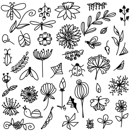 stripes doodle of flower and leaf with Insect free hand drawing sketch vector Ilustração