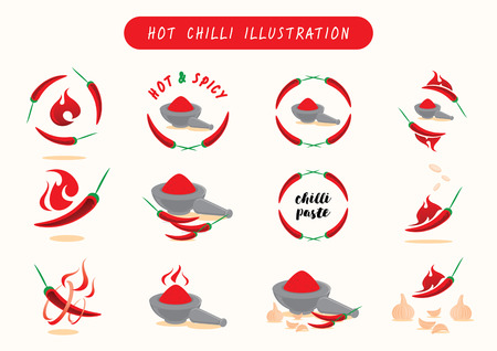 hot chilli vector llustration element graphic with chilli,chilli paste,fire,garlic and