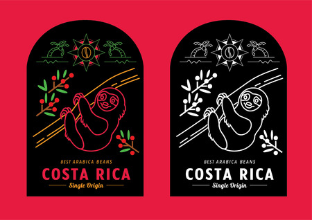 Costa Rica coffee beans label design with sloth climbing tree vector illustration