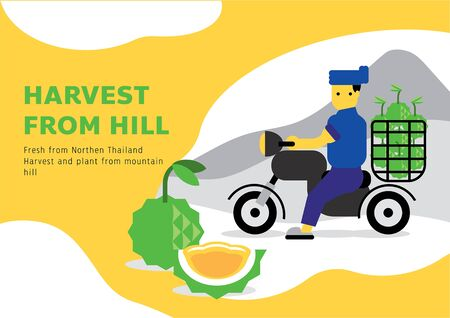 local farmer harvest from hill with local farmer on motorbike from northern Thailand vector illustration background Ilustracja