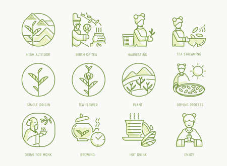 birth of Chinese tea icons set with emperor,tea brewing,leaf,Buddhist monk,girl,fermentation,sun drying process and tea leaf streaming,