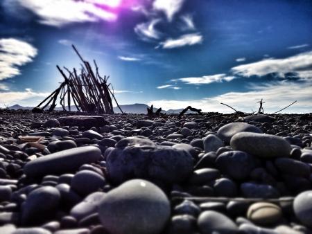 stoney: Driftwood sculpture on a stoney beach Stock Photo