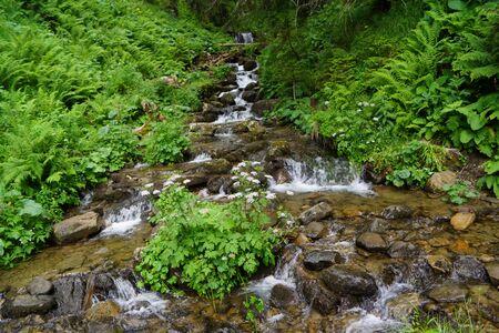 waterfall Carpathian mountains