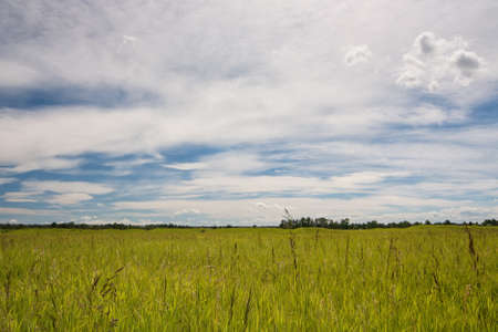 Prairie grasslands on a sunny but cloudy day. Stock Photo