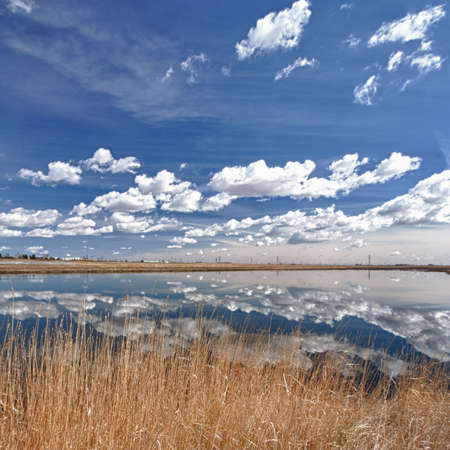 Reflections of blue sky and clouds on wetlands