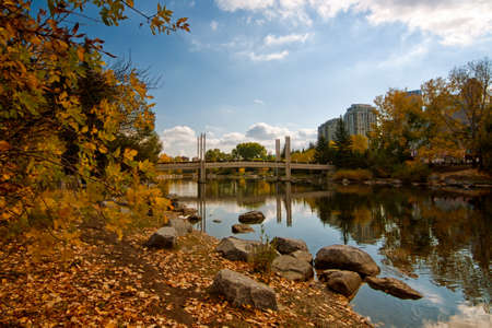 Autumn park landscape with bridge, pond and leaves on the ground.