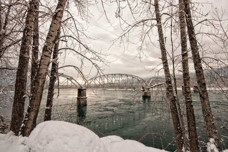 Trestle bridge on the Columbia river framed with trees in winter