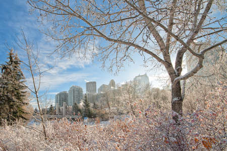 The city of Calgary framed by a winter landscape