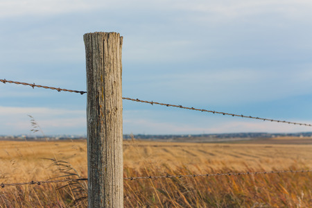 fence post: Fence Post with prairie landscape bokeh.