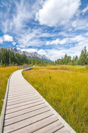 canmore: Landscape of the boardwalk along Policemans creek in Canmore, Alberta.