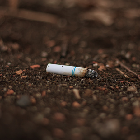 Macro of a discarded cigaret butt in the dirt.