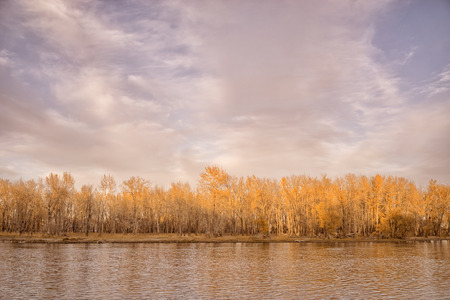 provincial forest parks: Autumn Trees reflecting in the water of the Bow River, Calgary, Alberta. Stock Photo