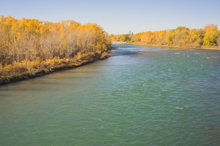 Landscape of the Bow River surrounded by Autumn Coloured Trees.
