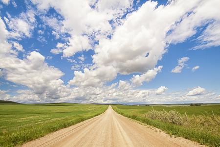 Landschap van een Alberta prairie onverharde weg die leidt af in de verte.