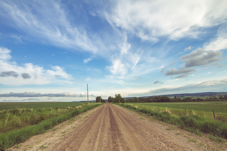 dirtroad: Landscape of a summer country road on a cloudy day. Stock Photo