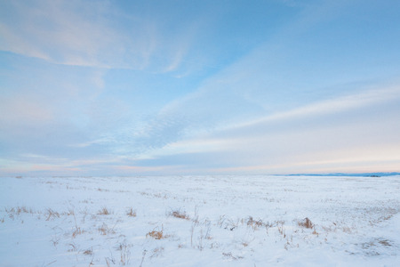 canada agriculture: Landscape of the snow covered prairie in Alberta, Canada.