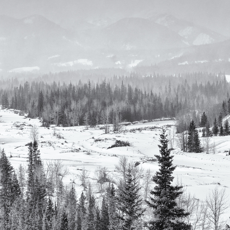 snow storm: Square landscape of a snow storm over the Rocky Mountains, Canada.