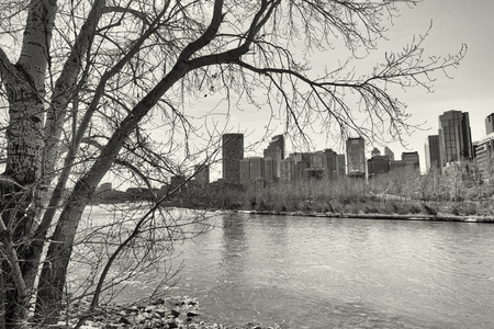 Tree framed monochrome Calgary cityscape with the Bow River in the foreground. Stock Photo