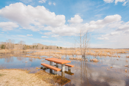 Landscape of a flooded picnic table in Red Deer Lake, Calgary Alberta.