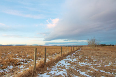 Landscape of the Alberta prairie in winter with a fence leading off into the distance.