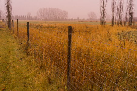 canada agriculture: Misty autumn prairie landscape in the rain with fence line.