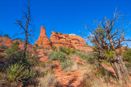 Red rock desert landscape of a rock formation framed by two dead trees. Stock Photo