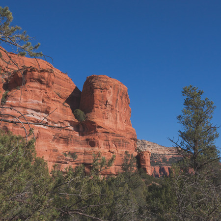 red rock: Square landscape of a red rock formation surrounded by green foliage in Sedona, Arizona. Stock Photo