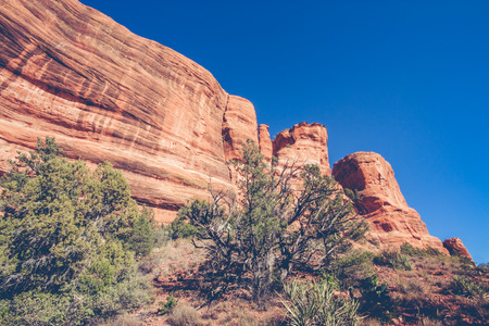 Landscape of a red rock formation with blue sky with a small tree in foreground.