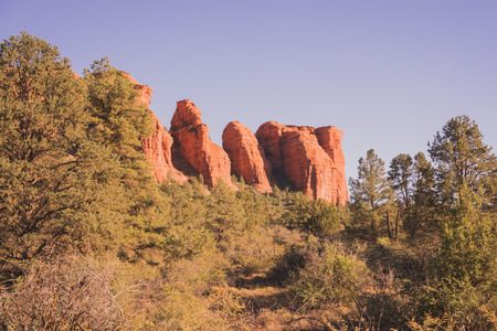 Landscape of a red rock formation surrounded by green foliage in Sedona, Arizona.