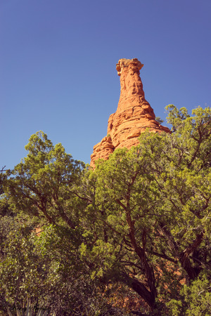 Landscape of a rock formation reaching out from behind trees, Sedona, Arizona.