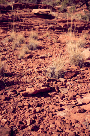 red rock: Textured ground of red rock in Sedona, Arizona.