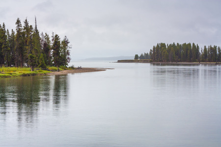 Landscape of tree lined Yellowstone Lake in the rain. Stock Photo
