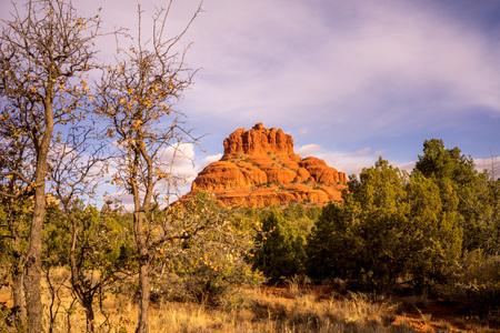 Landscape of a tree framed bell rock in Sedona Arizona.