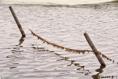 Landscape of a water submerged fence. Banco de Imagens